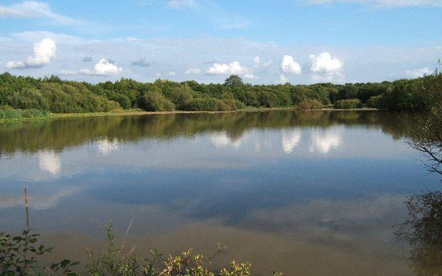 Great Pond in Epsom, UK